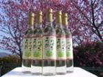甲州小梅ワイン